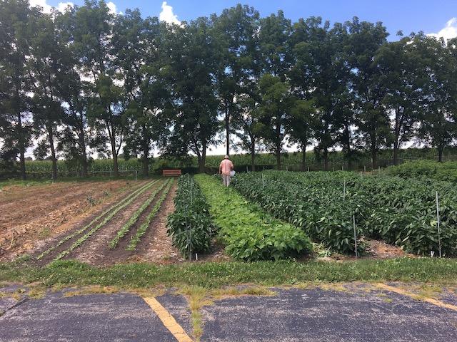 Jim in field